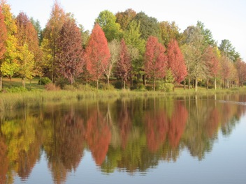 Outono em Sani Pass