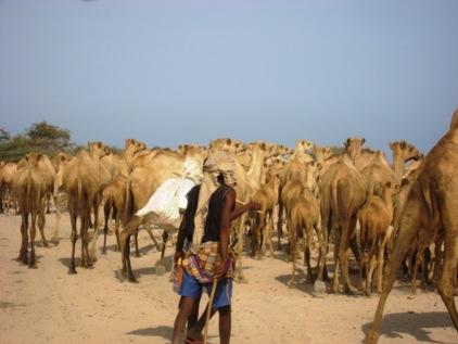 Deserto entre Somalilandia e Djibouti