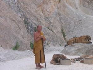 Monge com tigre