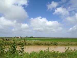 Canais e plantações no interior