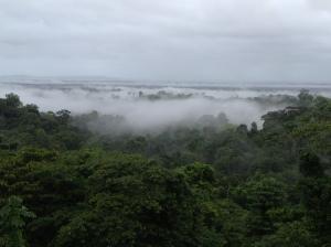 Amazônia Francesa