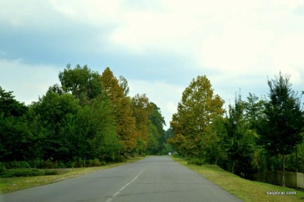 Estradas vazias
