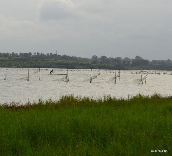 Redes de pesca no Lago Togo